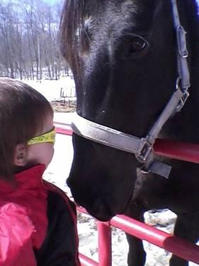10 Year Old All Black Registered QH Mare