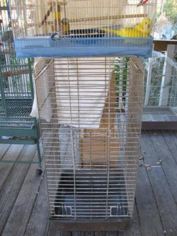 Cages, Quaker parrots, and more
