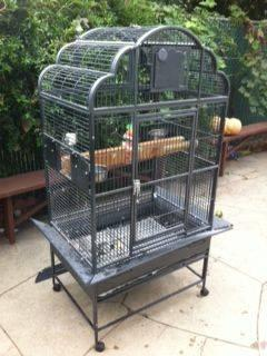 Large Parrot Cage like new