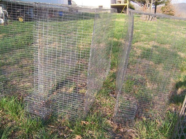 small parrot breeder cages