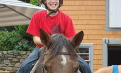 Gentle, safe 24 yr old quater horse/morgan cross. 14.2. rides english and western was a camp horse 12 yrs ago whe I bought him. He has babysat my children, my grandchildren and many other kids that have never been on a horse before. he is sound, utd on