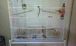 We are moving and need to rehome our 3 parakeets. They will come with there own cage as seen in the pictures. Cage is removable from stand if you prefer a tabletop. Birds are healthy. All seen in pic are included, food and water dishes, toys, 3 swings,