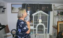 6 year old African talks well and sings silly bird barks like a dog loves attention dose not say any bad words says what ever .very pretty bird and large cage and small cage for travel loves sitting on your shoulder.not sexed.see pics.