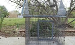 Female Amazon Parrot. She is around 40 years old and prefers and responds well to MEN. She is very friendly toward children as well. Included in the price is the huge circular cage she lives in. Please call Rhonda at 501-626-2259 with any questions or