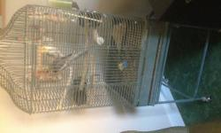 Purr-fect Pet in Grants Pass has baby Cockatiels. $70.00 and up. PLEASE... NO E-MAILS. Purr-fect Pet 1688 N.E. Lynda Ln. Grants Pass OR, 97526 541-479-8682 Your one stop, all in one, pets and supplies. Serving Grants Pass for 20 years.