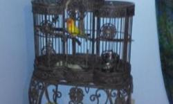"Beautiful Sun Conure with iron cage. He is friendly and does not bite. He doesn't like hands for some reason, but LOVES to ride around on your shoulder. He loves all kinds of music. Will also include a metal ""travel"" cage, although he even rides on my"