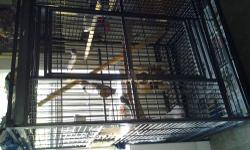 SELLING A LARGE BIRD CAGE 45by30.. its a big cage for macaw. selling it FOR $200. NO LOW BALLERS, THIS IS A $400 CAGE.. IF U HAVE QUESTIONS CALL ANYTIME AT: 954.628.6334 THANKS.....GRACIAS.....