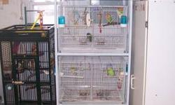 Lots of bird cages 4 stacks, singles, flights. contact for more info. All are like new, if not new. Selling every cage with gravity feeders, water bottles, and perches.