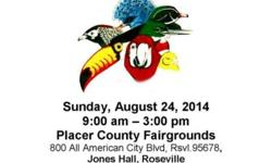 Exotic Bird Mart, Sunday, August 24, 2014, 9a-3p, at the Placer County Fairgrounds, 800 All American City Blvd, Roseville, 95678. Dr. Jeanne Smith, DVM will be there to answer questions on birds (NO EXAMS). Many vendors will be there selling birds