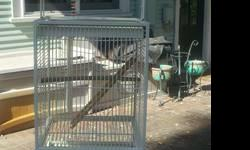 This cage is in excellent condition a light black color, 3 feed doors, the top opens. It can hold a small parrot or 2 small birds. Asking $75.00