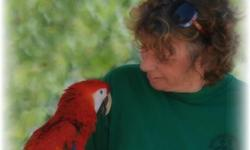 We buy Birds, Rooster and small reptile at Arrieros Pet Shop, give us a call 619-942-1674