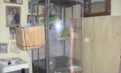 3 yr old blue and gold macaw . will come with cage with play top , water bottle, food bowls, toys , and whatever food is left he is a 1 yr old. he was handfed when a baby but has not been handled much in the last 2 years he will need to be worked with but