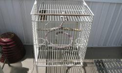 """Large, bird cage, 20"""" X 20"""" X 24"""" heavy steel W slide out tray, Space between Bars is 3/4"""", and 6"""" legs. Contact by email please, If phone does not answer!"""