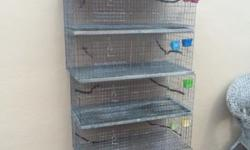Have 5 cages. Great for breeding diamond doves or Pigeons. They come with trays. We have bred many Diamond Doves out of these. 120 for all everything. This ad was posted with the eBay Classifieds mobile app.