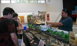 Exotic Bird Mart, Sunday, August 25, 2013, 9a-3p, at the Placer County Fairgrounds, 800 All American City Blvd, Roseville, 95678. Dr. Scot McDonald will be there for a well bird/sexing clinic. Please bring your bird in a carrier. Many vendors there