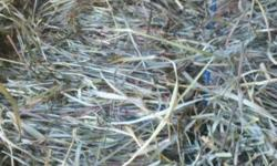 CONDON FARMS PREMIUM QUALITY HORSE HAY, STRAW & SUPPLIES (STANDARD SQUARE BALES AND 4X5 ROUND BALES NET WRAPPED) ORCHARD GRASS - 1st and 2nd cutting (2nd cutting is a soft & fluffy texture with nice green color) ALFALFA - 2nd and 3rd cutting TIMOTHY - 1st