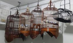 Brand new dome top parrot bird cage measuring 32 inches wide by 23 inches deep by 66 inches high. Wrought iron steel construction with heavy duty baked on pewter powder coat finish. Three stainless steel bowls on external doors, removable grate and tray