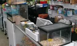 Gran venta de pajaros, peces, comida y mucho mas, estamos en la 5024 west 12 av hialeah fl 33012, telef - 786-355-3203