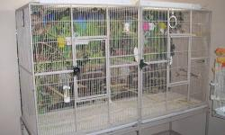 I'm a small hobby breeder of beauiful and very healthy Lady Gouldian finches, I have some rare and hard to find color's , I have different color's available , Green back's, split to blue G-B. Yellow / Split to Blue, Dulite's / split to Blue, Pastle's ,