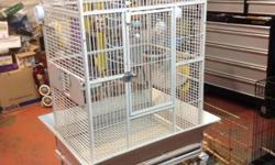 I am opening my home to birds. I am NOT a rescue. I am just a bird lover. I grew up with my parents having parrots and i carried on the love for birds. I feed pellets and fresh fruit and veggies with cooked foods. They will have time out of cage and