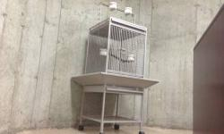 Bird cage ideal for parakeets, love birds, canaries... In excellent condition!!! This ad was posted with the eBay Classifieds mobile app.