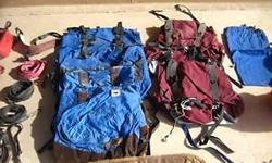 Assorted gear for llamas. Includes saddle blanket, packs, halters,etc. Will deliver or ship.