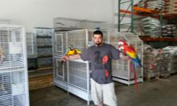 Hi, Im Interested in buying birds to breed, I have some time in my hands And would like to get back into this beautiful and entertaining hobby That Im sure most of you guys share the same passion. Please If you have any birds for sale Do not hesitate in