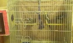 For sale in cludes cage cockatiel is pair $80 is cage bourkes is cage $70 lover is cage $50 perakeets $40 is cage This ad was posted with the eBay Classifieds mobile app.