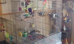 I have a parrot cage for sale. For sun conures on up, no bird or toys included cage only. Cage comes with cart on wheels. Can be seperated, asking $175.00 located in Mt. Sterling ky. Serious calls only. Call or text (859) 398-9789