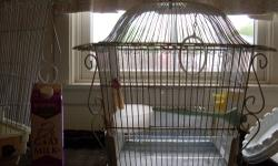 One single silver wax bill finch needs a home with other finches.. uncertain if the bird is a female or a male . Although we call him Mr. Brown of course he doesn't respond anyhow. The reason for re-homing is that the resident female zebra companion