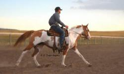 A MUST SEE! 2006 APHA red dun overo sabino mare, LXY I NEED A SCOTCH. APHA# 922,403, Sired by APHA Champion, Hot Triple Scotch by World Champion, Hot Scotch Man. Pedigree full of performance! Finishing 60 under saddle with trainer, Cody Stahly and is