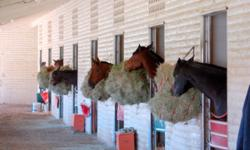 Horse rescue needs to find a Ranch Property with Corrals for rescue Horses. Prefer: (Fallbrook / Bonsall / Temecula) Horse rescue is in Desperate NEED of a Property part of a Horse property area with some Horse Corrals / Panels to house up to 8 rescue