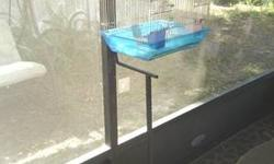 """This is a """"NEW"""" secure outside housing cage that we built to protect your birds from all animals. Made of galvanized steel. Also it is light weight and is easy to clean with a garden hose. The perfect outside solution for housing many finches or Love"""