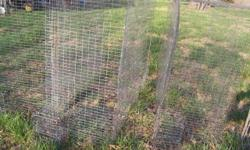 4 wire cages for conure size birds., 1 x 2 galvanized wire , 2 ft. wide , 4 ft. tall, 5 ft. long, has a bowl holder on each end that won?t tip over, and prevents escapes. $75 each. Located in Saint Joe Arkansas 72675 call John 501-207-2244 NO TEXTS See my