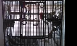 Have 2 breeder pair yellow nape amazons. All four used to be pets, they have a good vocabulary good feather good health. have breeder cages & 1 nest box to go with them if you want them. 900.00 per pair firm on price. Beautiful birds. Also have a pair of
