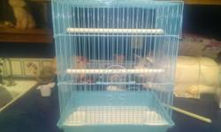 I have a zebra finch and small cage for $20. Great pet! 918-859-3250